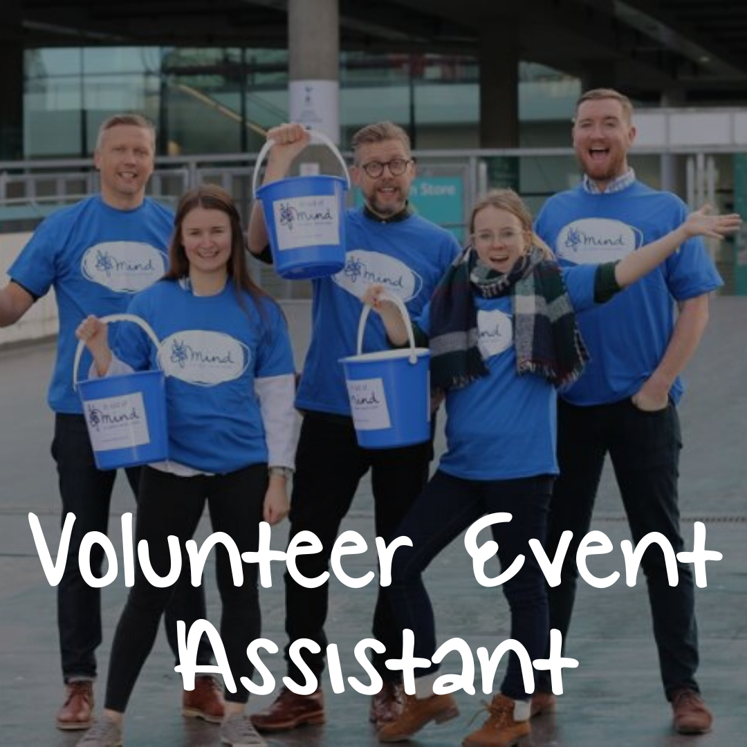 Volunteer Event Assistant